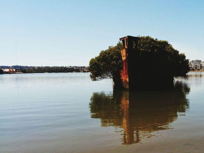 Shipwreck Green Trees Ship