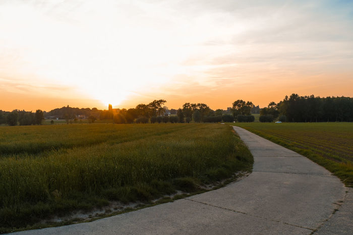 farmer's road Beauty In Nature Church Tower Grass Live For The Story Nature Scenics Sky Sunset Sunset #sun #clouds #skylovers #sky #nature #beautifulinnature #naturalbeauty #photography #landscape Sunset_collection Tranquil Scene