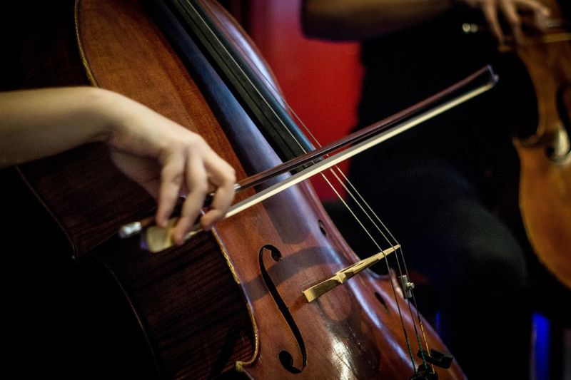 Chello Music Indoors  One Person Musical Instrument Arts Culture And Entertainment Only Men Skill  Adults Only Midsection Performance Human Hand Human Body Part Close-up Musician Adult