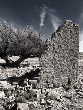 """Mystery Ranch No. 28"" The Monolith. New Mexico Photography New Mexico Adobe Wall Monolith Abandoned Buildings Abandoned Places Abandoned Dead Tree Stone Wall Sky Day No People Cloud - Sky"