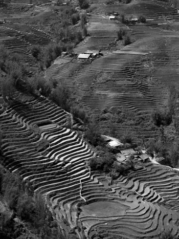 Sapa's beautiful landscapes Beautiful Beauty In Nature Beauty In Nature Black & White Black And White Blackandwhite Blackandwhite Photography Documentary Photography Dramatic Landscape High Angle View Landscape Landscape_Collection Landscape_photography Landscapes Natural Pattern Nature Nature Nature Photography Nature_collection Naturelovers Rural Scene Solitude Tranquil Scene Tranquility Wilderness
