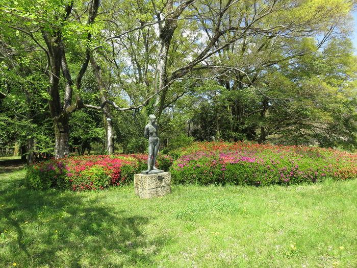 みどり 緑 風景 像 ブロンズ像 Beauty In Nature Day Flower Grass Green Color Growth Nature No People Outdoors Plant Sculpture Spraying Statue Tree