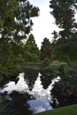 Beauty In Nature Beth Chato Gardens Day Elmstead Market Essex Green Color Growth Horizontal Lake Landscape Nature No People Outdoors Reflection Reflection Lake Scenics Sky Tranquility Tree Water