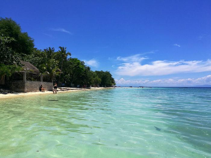 White sand beach of moalboal, cebu, philippines