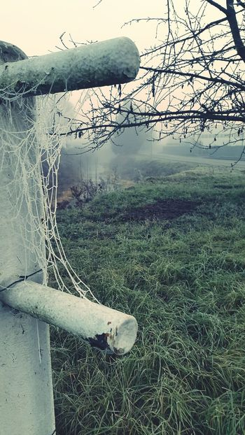 Spiderweb Reflection Tranquility Beauty In Nature Tranquil Scene Nature Cold Temperature Spiderweb Fog Autumn Leaves