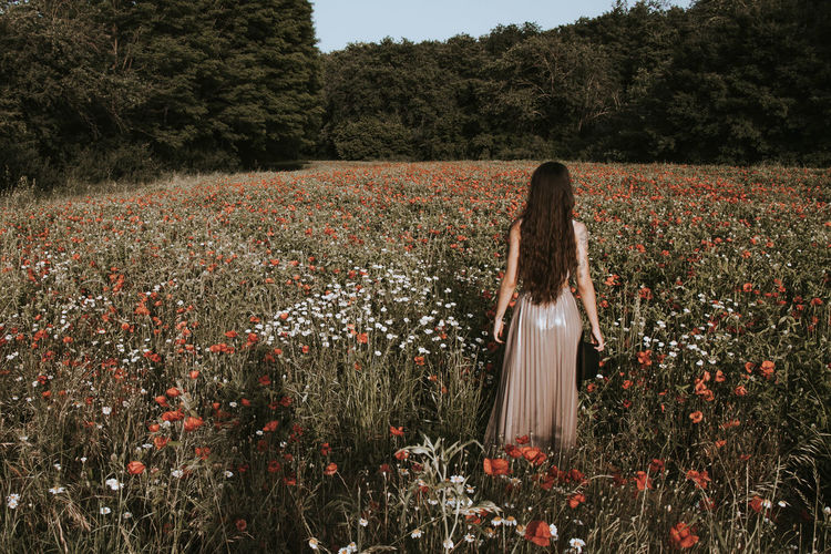 Rear view of woman with long hair standing amidst flowering plants on field