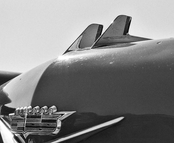 The Week On EyeEm Caddy Classic Car Bnw Carsofeyeem Design Hoodornament