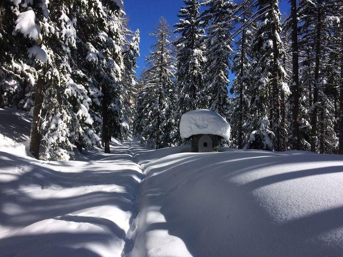 Small chapel in deep snow Wegkapelle Lötschental Path In Snow Deepsnow