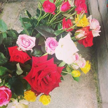 추석맞이 엄마 장미 집에 식구들이 모이는 날이면 어김없이 꽃을 준비하시는 우리엄마♥