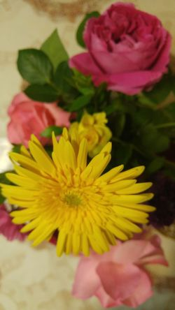 Flower Freshness Close-up Yellow Beauty In Nature Indoors  Bouquet Nature Rose - Flower Bunch Of Flowers Pink Color Springtime Selective Focus Petal Baghdad , Lraq Baghdad