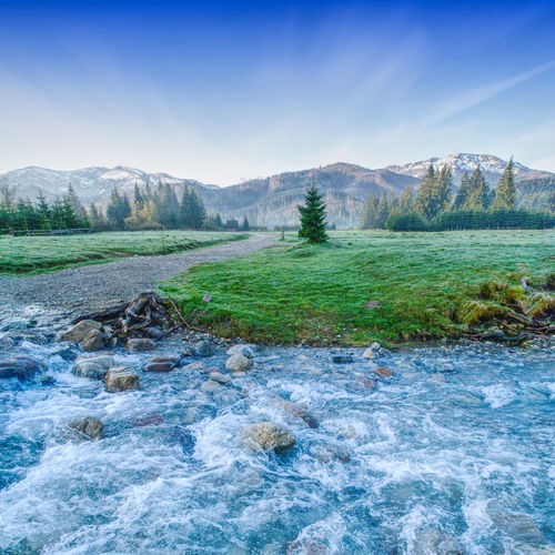 Fast stream crossing a meadow near Zakopane (Poland) with Tatra mountains in background Beauty In Nature Day Grass Hot Spring Idyllic Landscape Mountain Mountain Range Nature No People Outdoors River Scenics Sky Tranquil Scene Tranquility Travel Destinations Tree Water Waterfront The Great Outdoors - 2017 EyeEm Awards