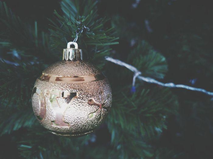 Close-up of illuminated christmas tree in winter