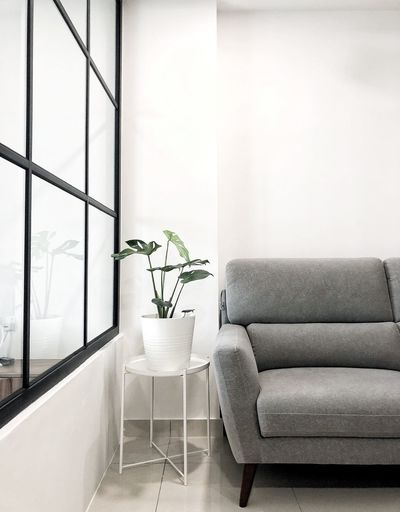 Nordic living room Glass Minimalist Interior Design Minimalism Nordic Indoors  Seat Furniture Plant No People Chair Architecture Home Interior Sofa Potted Plant Vase Nature
