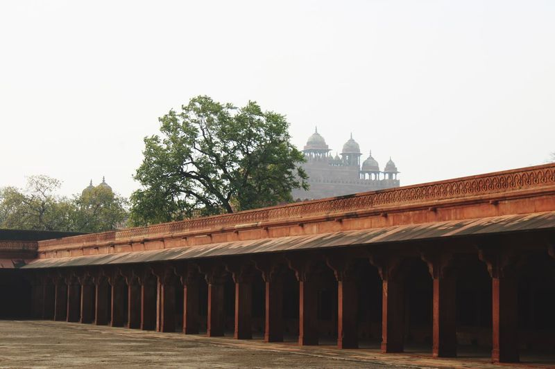 Fatehpur Sikri & mosque Architecture Built Structure Sky Building Exterior Tree Clear Sky No People Travel Destinations