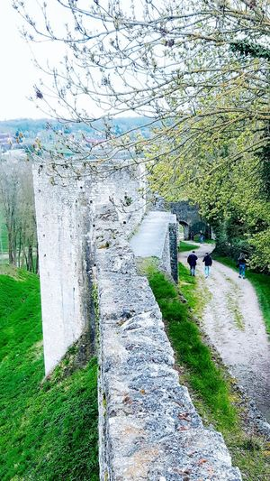 Towers And Ramparts On The Rempart Top Of The Tower View From Above Stone Wall Landscape Way People Walking  Tree Eye4photography  EyeEm Gallery Wiew From The Tower