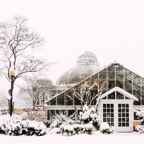 Architectural Feature Architecture Building Exterior Built Structure Cold Cold Temperature Day Low Angle View Snow Snowy Spirituality Weather Winter Winter Wintertime Winterwonderland