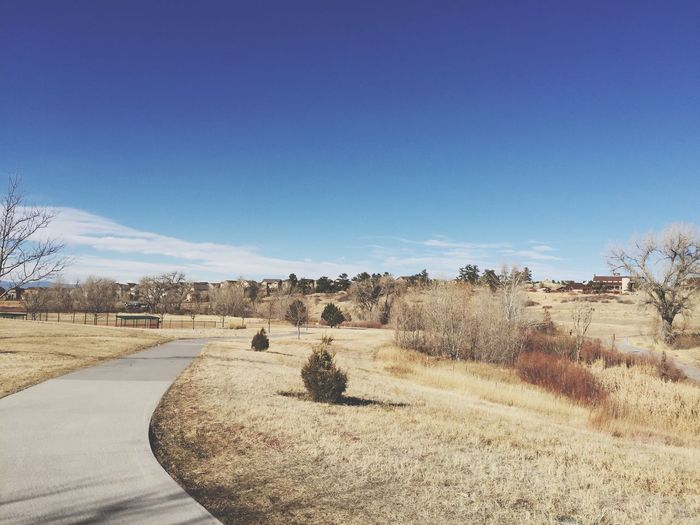 Open space park Parker Colorado suburban suburbs suburbia winter daytime snowless