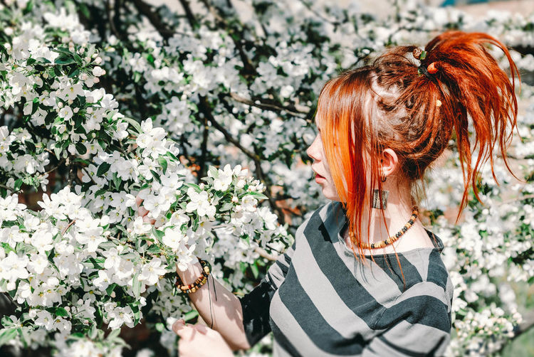 Side View Of Redhead Young Woman Holding Apple Blossoms On Tree