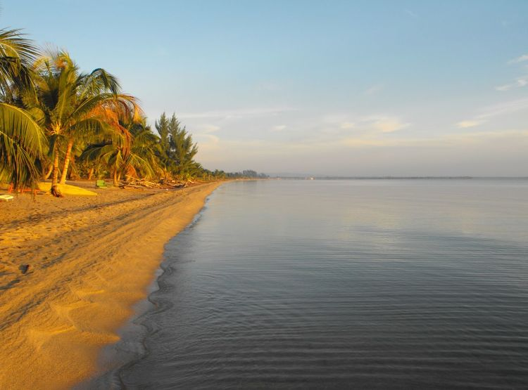 Morning Sea view in Dangriga Beach Morning Beachwalk Beautiful Beauty In Nature Belize  Blue Calm Cloud - Sky Idyllic Landscape Nature Nature No People Outdoors Palm Trees Rippled Scenics Sky Tranquil Scene Tranquility Water