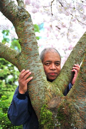 Portrait of man in tree trunk