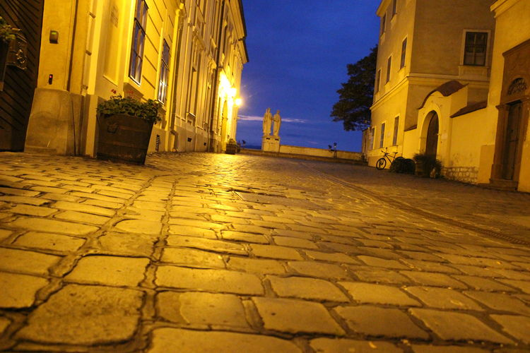 Surface level of cobblestone street against buildings in city at night