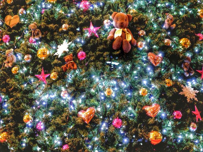Decoration Chirstmas Tree 2010 AMU Plaza Nagasaki ? Illumination Teddy De Good Night( ̄^ ̄)ゞ