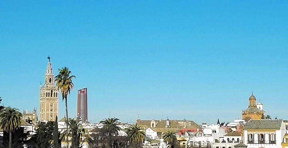 Sevilla Seville Sevilla Spain Travel Destinations City Blue Travel Architecture Building Exterior No People Urban Skyline Cityscape Outdoors Clock Face Clock Cultures Clock Tower Day Sky giralda Clear Sky Sky Lines Architecture