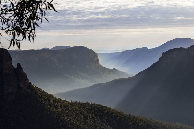 An early morning in the Blue Mountains in Australia Australia Blue Mountain Sunrays Beauty In Nature Cloud - Sky Environment Forest Idyllic Landscape Mountain Mountain Peak Mountain Range Nature No People Non-urban Scene Outdoors Rainforest Scenics - Nature Sky Sunbeams Sunrise Tranquil Scene Tranquility Travel Destinations Tree