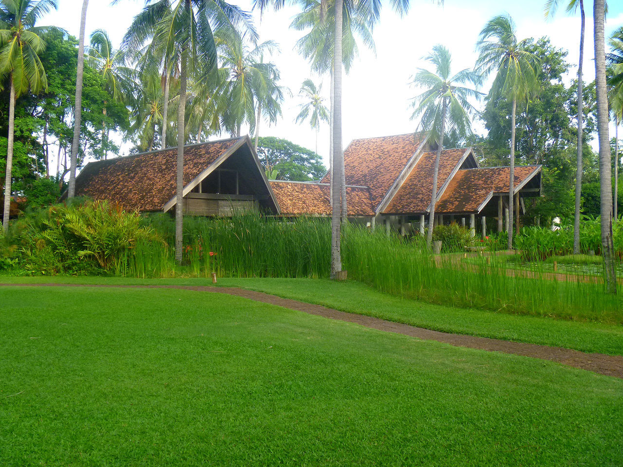 tree, palm tree, grass, green color, growth, built structure, no people, architecture, day, nature, beauty in nature, building exterior, tranquility, outdoors, scenics, sky