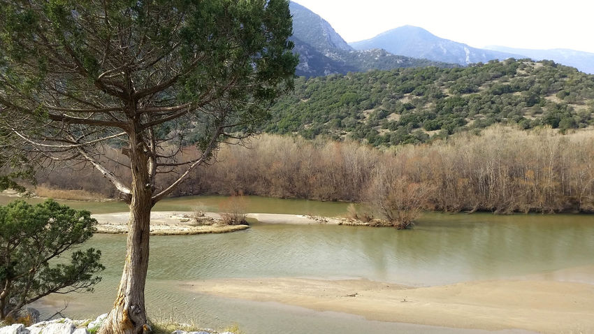 Enjoying The View Trees And Sky Riverscape River Collection River View Beautiful Nature Winter_collection Landscape_photography Winter Tree Tree_collection  OpenEdit From My Point Of View Spectacular View Nostalgic Landscape @ Kavala In Greece  Nestos_river