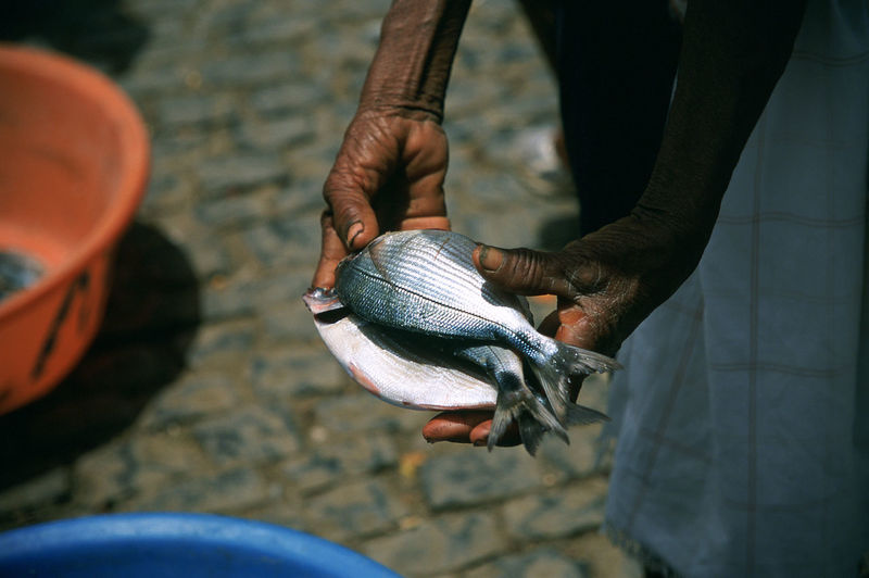 Midsection of man selling fish at street market