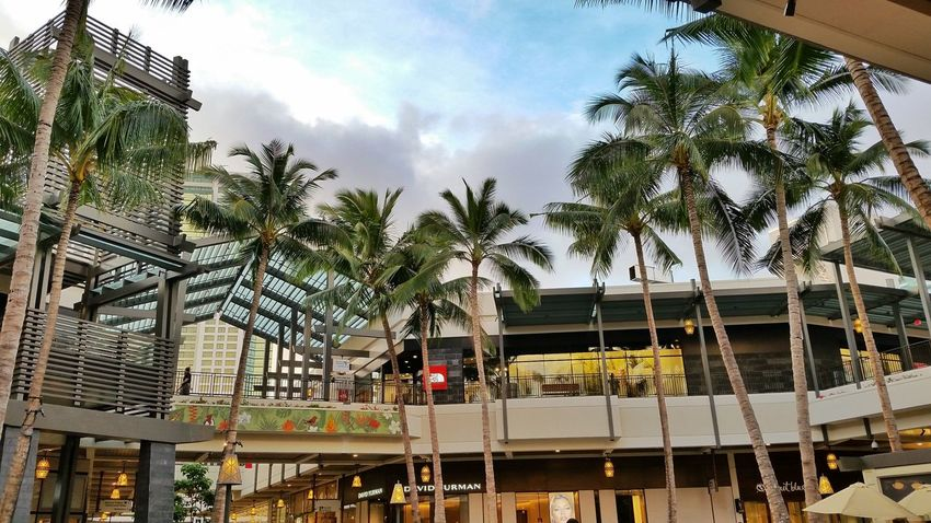 City Mall Check This Out Solo Traveler! Travel Photography Oahu Vacation Waikiki Hanging Out