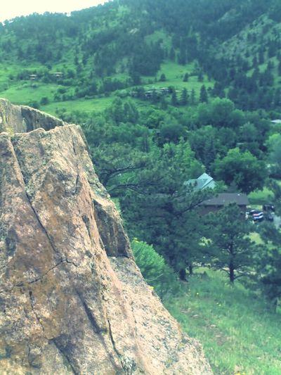 Colorado Foothill