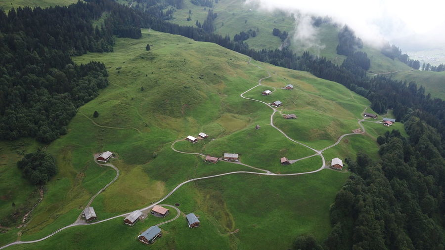 High angle view of green landscape