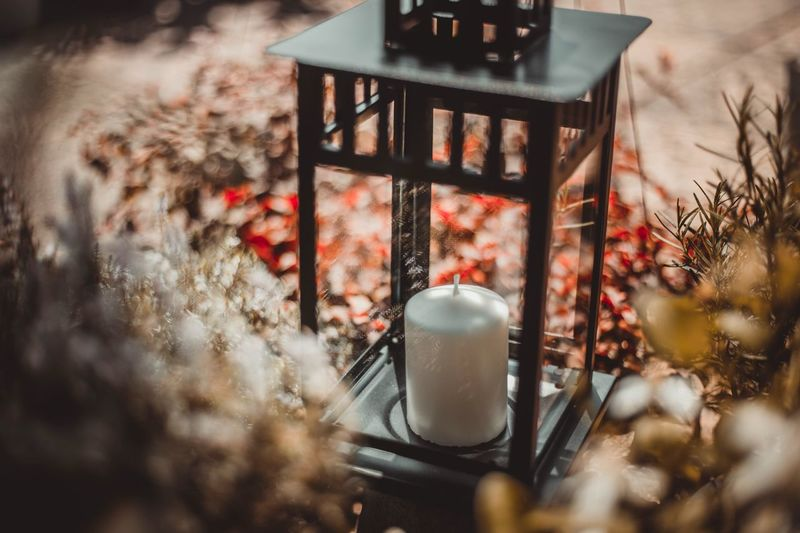 Candle Candlelight Selective Focus No People Nature Plant Tree Day Window Outdoors Architecture Lighting Equipment Heat - Temperature Metal Close-up Railing Focus On Background Growth Reflection