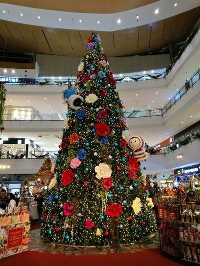 Christmas Christmas Tree Celebration Christmas Lights Christmas Decoration Annual Event Indoors  Holiday - Event Tree Malaysia Putrajaya