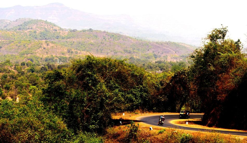 Western ghats, a place for those who seek peace in nature. Landscape Beauty In Nature Mountain Roads Tree Nature Agriculture Field Outdoors Car Mountain Road Day Scenics Beauty In Nature