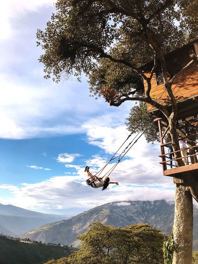 The Swing At The End Of The World Swinging In A Tree Cloud - Sky Sky Tree Nature Plant Day Transportation Flying