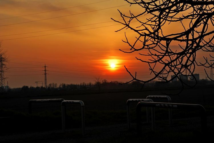 Bare Tree Beauty In Nature Branch Chiaravalle, Milano Landscape Nature No People Orange Color Outdoors Scenics Silhouette Sky Sun Sunset Tranquil Scene Tranquility Tree