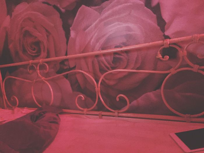 Interior Views Badtime Check This Out Roses Ironbad Bad Pinknight Romance