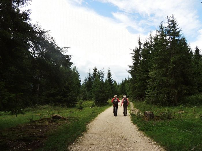 Adult Beauty In Nature Cloud - Sky Day Dirt Road Nature Outdoors People Real People Sky The Way Forward Tree Walking