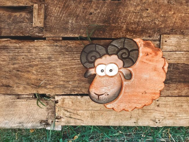Representation Wood - Material Creativity Stuffed Toy Day Art And Craft No People Outdoors Heart Shape Still Life High Angle View Human Representation Nature Teddy Bear Toy Directly Above Emotion