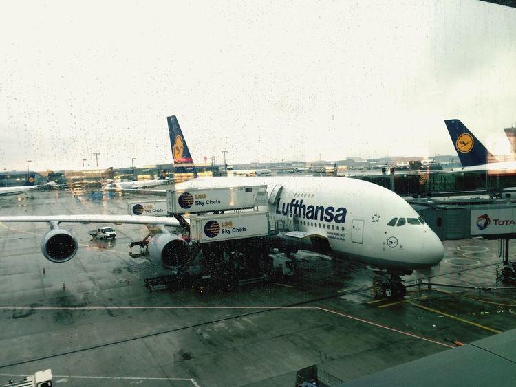 Frankfurt Frankfurt Am Main Germany Lufthansa Airbus A380 Airport