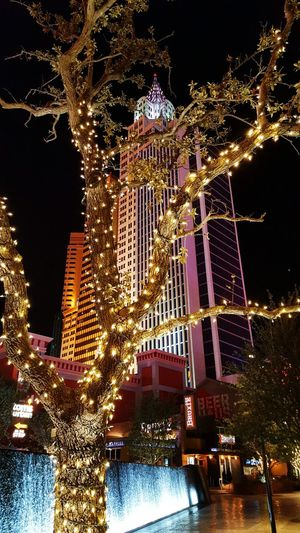 Las Vegas January 2017 Architecture City Night Gold Colored Sky Illuminated Shiny Gold Water Outdoors Skyscraper No People