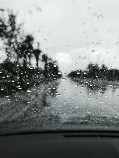 Rainy days are the best days Rain RainyDay IPhoneography IPhone7Plus