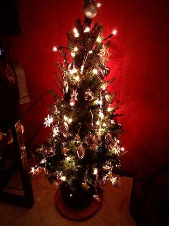 Frohe Weihnachten Merry Christmas! Badnauheim Hessen Weihnachtsbaum Christmas Tree Enjoying Life Hello World Frohe Weihnachten! - merry christmas my friends ??