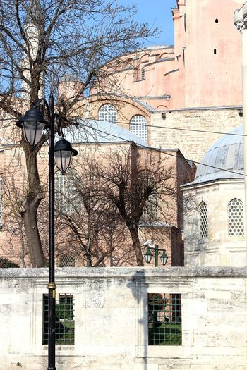 Overlapping Buildings Architecture Photography EyeEmNewHere Hagia Sophia Street Lamp Wall Brick Wall Stone Wall Shadow Tree Sky Architecture Building Exterior Built Structure Historic The Architect - 2018 EyeEm Awards 10