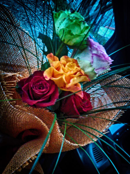Fiori Amore Beauty In Nature Bouche Close-up Day Flower Flower Head Fragility Freshness Indoors  Leaf Nature No People Petal Plant Rose - Flower