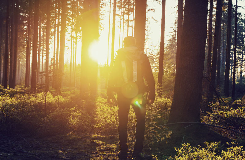 Jung Hikker enjoying the Summer sunset deep in the German Woodland Adult Adventure Backpack Beauty In Nature Day DEEP FOREST Enjoying Life Enjoying The Sun Forest Hiking Hikingadventures Nature One Person Outdoors Real People Standing Sunlight Sunset Travel Destinations Travel Photography Tree Tree Area Tree Trunk WoodLand Young Adult