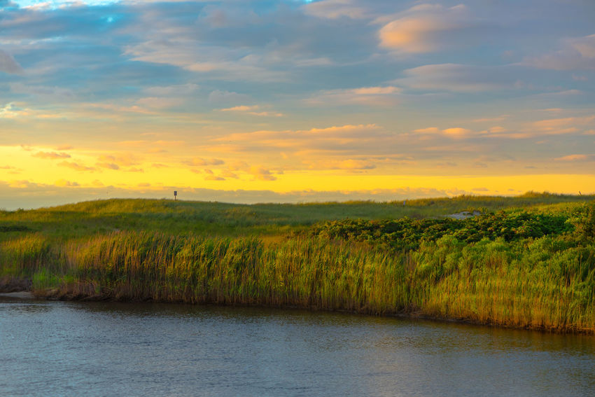 Tall grass growing in Wreck Pond near where it empties into the ocean. Nature Afternoon Sky Beauty In Nature Calm Sea Coast Colorful Sky Jersey Shore Placid  Vacation Spot Wallpaper Background Water